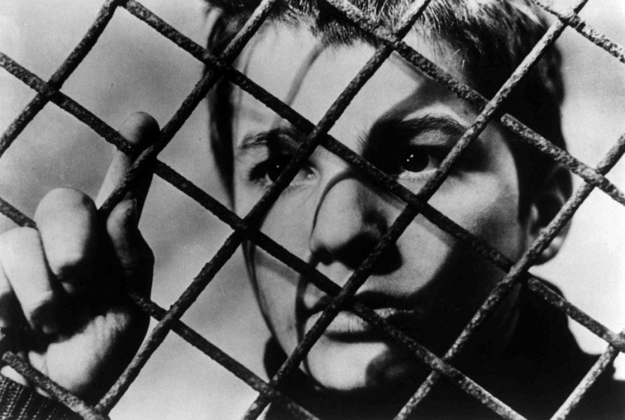 fenced-in