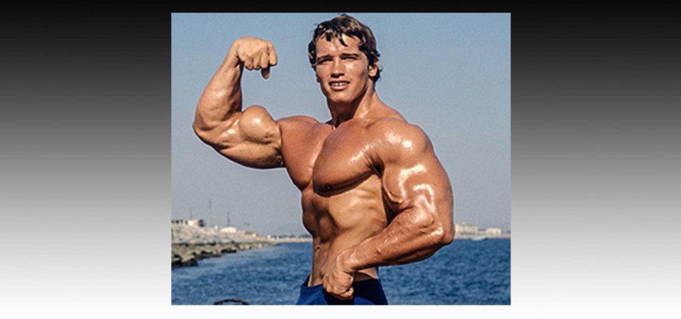Arnold Schwarzenegger Net Worth 2020 How Much Is Arnold Worth