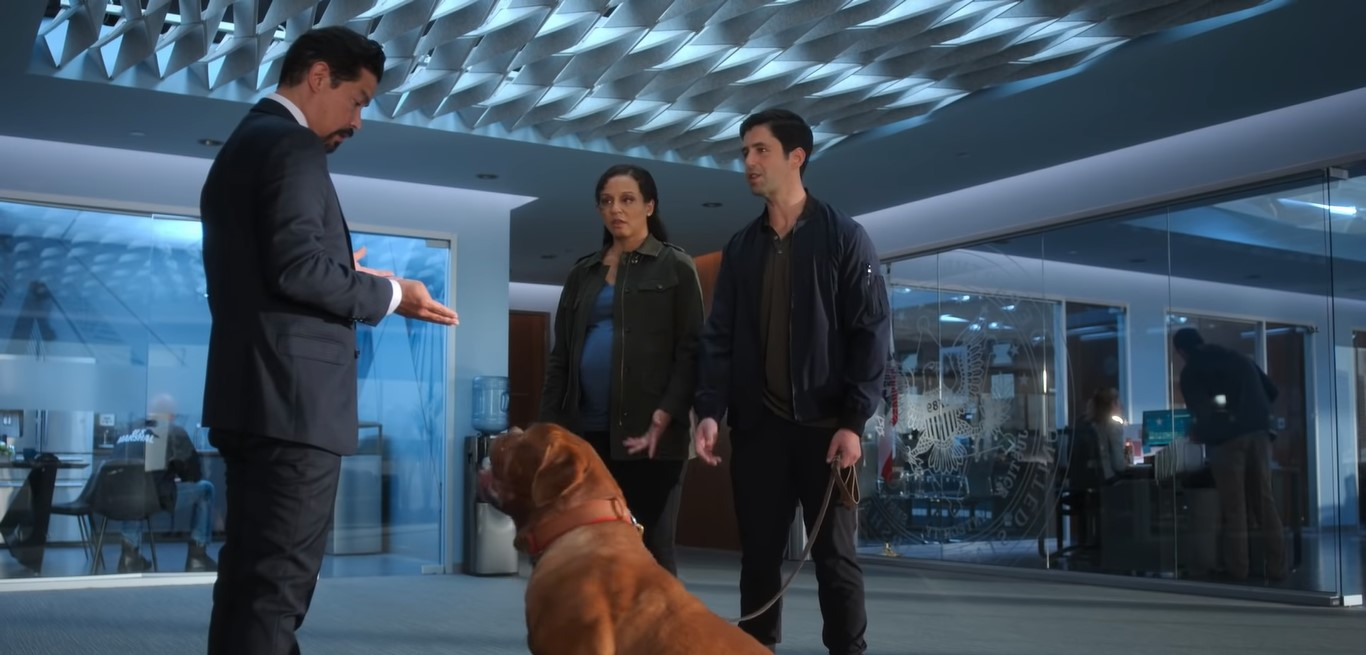 Is Turner and Hooch On Netflix, Hulu, Prime? Where to